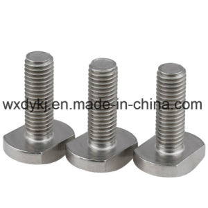 Stainless Steel 304 A2-70 T Bolt pictures & photos