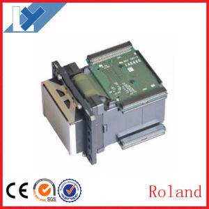 Original Roland Vs300 Vs420 Vs540 Vs640 RS540 RS640 Re540 Re640 Printer Head/ Roland Dx7 Printhead pictures & photos