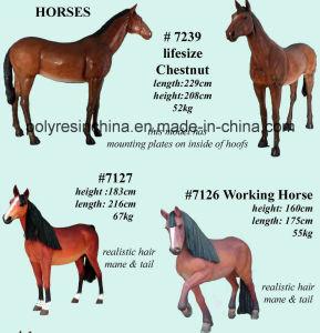 Fiber Glass Lifesize Horses Statue pictures & photos