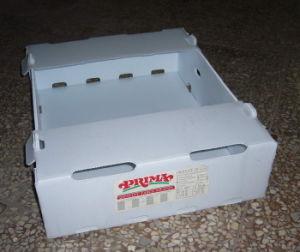 PP Hollow Sheet Box