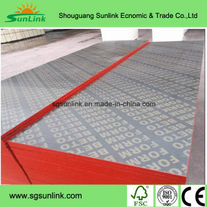 AAA Grade Film Faced Plywood for Construction pictures & photos