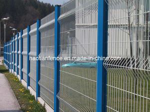 Wire Fencing pictures & photos