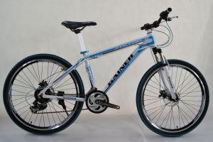 MTB Bike (WT-2670) pictures & photos