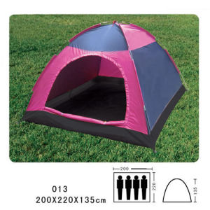 Camping Tent for 4 Person, Outdoor Tent, Tent (HWT-110) pictures & photos
