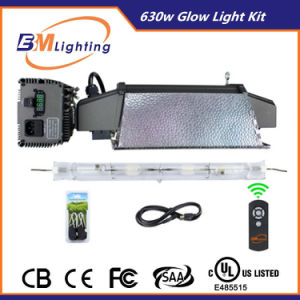 Hydroponics Grow Lighting Intelligent Controller Digital Ballast CMH Kit 630W pictures & photos