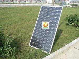 Monocrystalline Solar Panel (CNSDPV-155(S)) pictures & photos