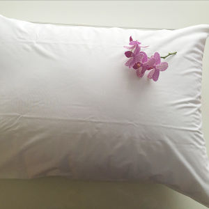 Waterproof Pillow Protector pictures & photos