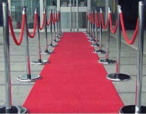 Needle Punched Carpet (exhibition carpet) pictures & photos