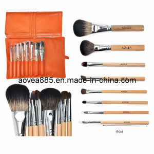 Professional Makeup Brushes, Cosmetic Brushes (ST124)