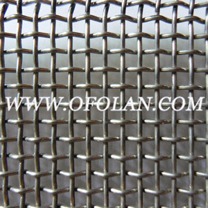 Hastelloy C276 Wire Mesh (AL03) pictures & photos