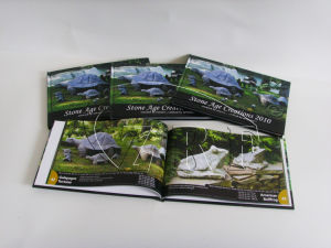 Hardcover Brochure Book Printing pictures & photos
