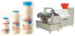 Betagen Bottle Blowing Machine (SQ-4/6)