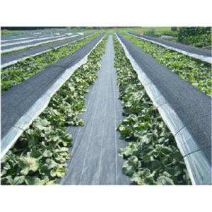 Plastic Woven Geotextile Weed Mat pictures & photos