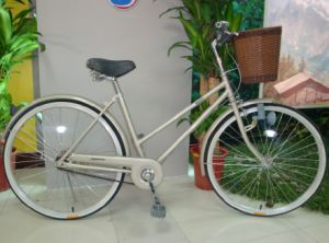 Good Quality Standard Bike Bicycle (FP-LDB-012) pictures & photos