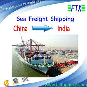 Sea Freight From Shanghai/Ningbo/Shenzhen to New Delhi India