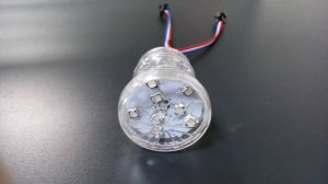 RGB Playground 2903IC 5050 18SMD Pixel LED Lamp pictures & photos