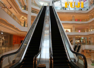 FUJI Indoor Escalator with 30 Degree 1000mm Step Width pictures & photos