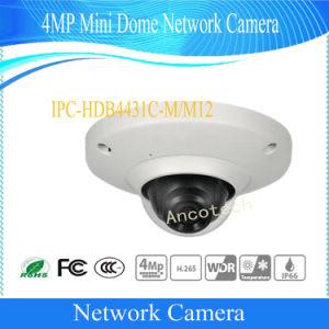 Dahua 4MP WDR Day & Night Mini Dome Network IP Camera Ipc (IPC-HDB4431C-M12) pictures & photos