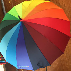 Promotional Auto Open 16k Colorful Rainbow Golf Rain Umbrella pictures & photos