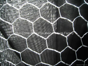 New Type Hexagonal Mesh Machine Manufacturer Sha5874 pictures & photos