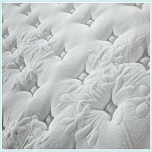 Memory Foam Bonnel Spring Mattress U25 pictures & photos