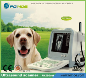 Fn260V Full Digital B Model Veterinary Ultrasound Scanner pictures & photos