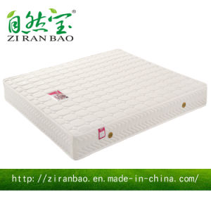 Confortable Compressed Knitted Fabric Hotel Memory Foam Mattress