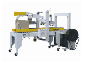Case Sealing and Strapping Machine Gpp-50c pictures & photos