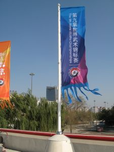 Hot Sell Advertising Roadside Banner pictures & photos