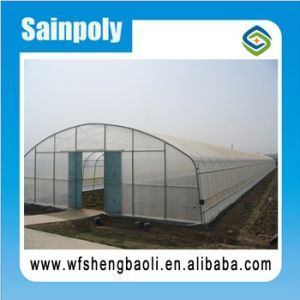 2017 China Factory Price Easily Installed Agricultural/Commercial Greenhouse pictures & photos