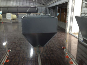 Poultry Equipment for Both Layers and Broilers pictures & photos