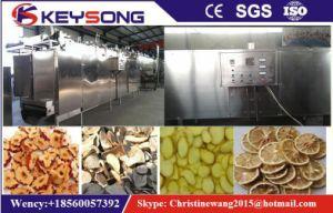 Vegetable Fruit Mango Grape Mesh Belt Baking Drying Machine pictures & photos