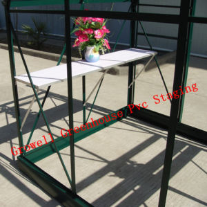 Greenhouse PVC Staging/Shelving with Alu. Frame (G-PVC shelf) pictures & photos
