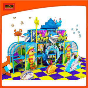 Hot-Selling Commercial Indoor Playground with Ocean Theme pictures & photos