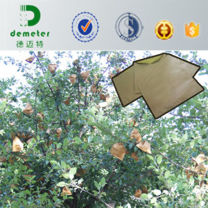 Custom Made Biodegradable Waterproof Wrapping Paper Bag for Fruit Packing pictures & photos