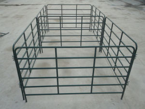Cheap Cattle Panel for Sale pictures & photos