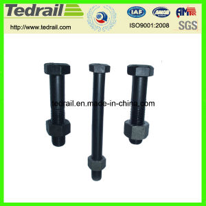 Hex Spear Bolts for Tunnel pictures & photos