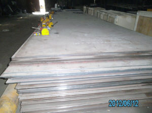Stainless Steel Plate with High Quality