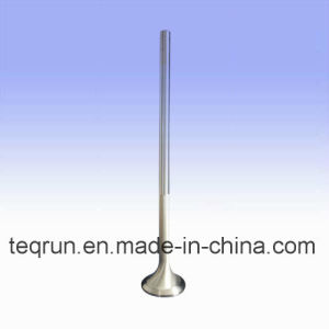 Yanmar N330 Exhaust Valve pictures & photos