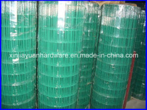 Gaw and Gbw Galvanized Welded Wire Iron Mesh for Sale pictures & photos