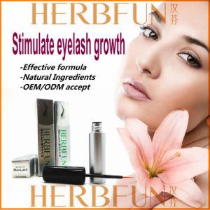 Natural and Effective Eyelash Growth Tonic