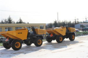 3tons Fruit Transport 4X4 Mini Dump Truck pictures & photos