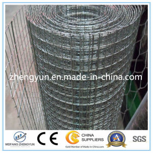 2017 Manufacturers Selling Galvanized Welded Wire Mesh Factory for Construction pictures & photos