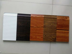Exterior Sandwich Wall Panel pictures & photos