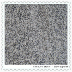 Granite Building Material Tile (G623) pictures & photos