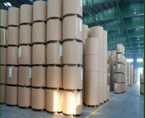 High Quality 125g 140g 150g White Testliner Paper in A4 Size Fluting Paper pictures & photos