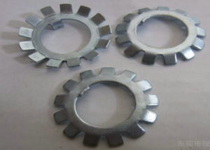 MB01-MB20 Ss304, Ss316 Lock Washer with External Teeth Serrated pictures & photos