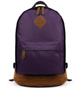 Laptop Backpack with Good Price for School, Campus and Shopping pictures & photos
