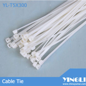Rohs Approved Nylon Cable Tie (YL-T5X300) pictures & photos