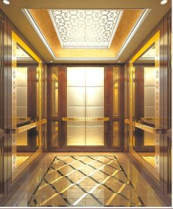 Elevator, Elevator Factory Price, Passenger Lift pictures & photos